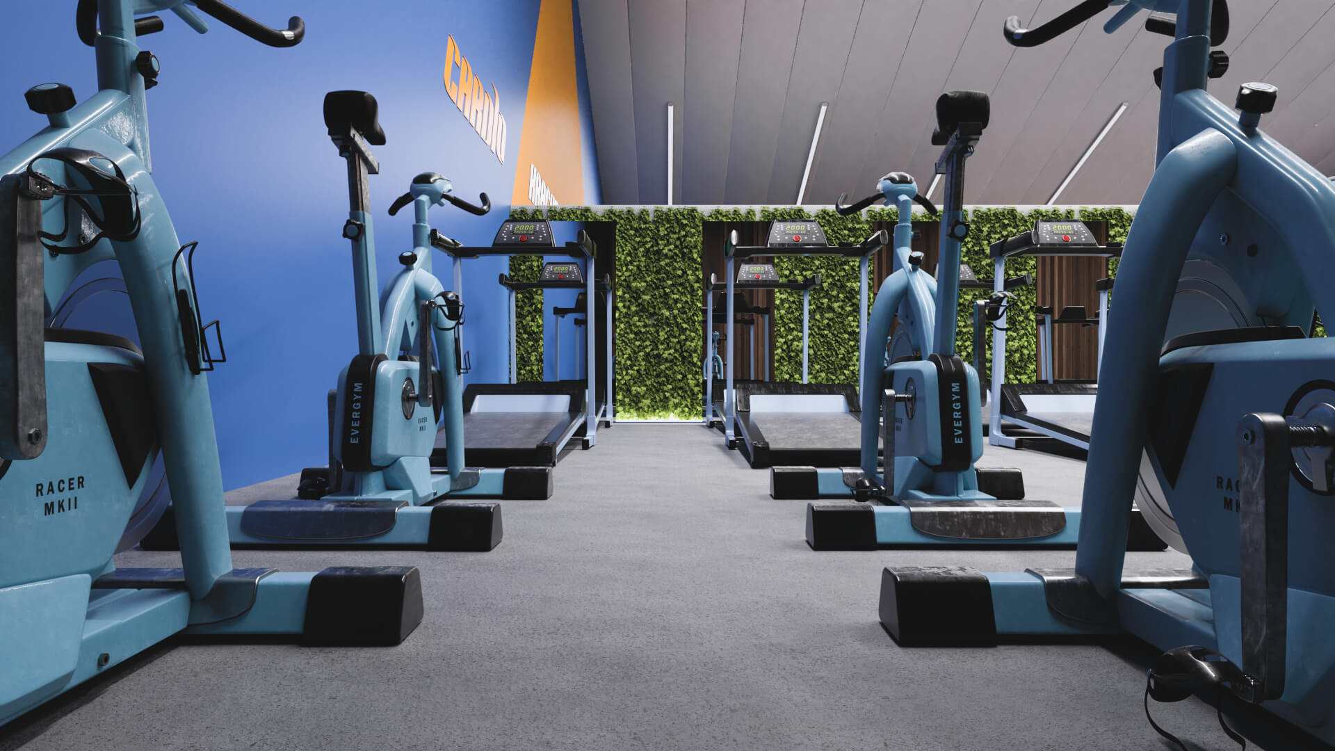 Open Space Gym Renovation